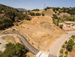 Photo of 20145 Orchard Meadow DR, SARATOGA, CA 95070 (MLS # ML81667342)