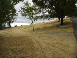 Photo of 22346 Regnart RD, CUPERTINO, CA 95014 (MLS # ML81706087)