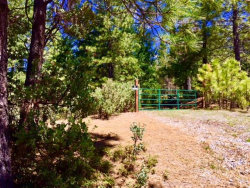 Photo of 5340 String Canyon RD, SOMERSET, CA 95684 (MLS # ML81707194)
