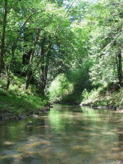 Photo of 00 Pescadero Creek RD, PESCADERO, CA 94060 (MLS # ML81770325)