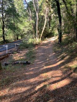 Photo of 18400 Highway 9, BOULDER CREEK, CA 95006 (MLS # ML81775728)