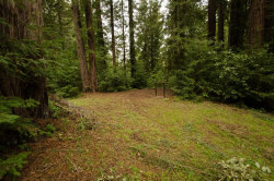 Photo of 14985 Fern AVE, BOULDER CREEK, CA 95006 (MLS # ML81777595)