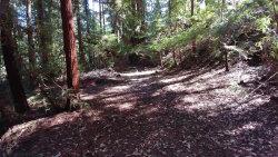Photo of 0 Monan WAY, BOULDER CREEK, CA 95006 (MLS # ML81799531)