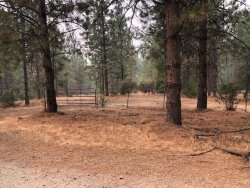 Photo of 0000 Buchanan RD, TUOLUMNE, CA 95379 (MLS # ML81813202)