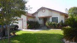 Photo of 3365 San Rivas DR, SAN JOSE, CA 95148 (MLS # 81656963)