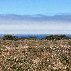 Photo of 240 Via Pontos WAY, LA SELVA BEACH, CA 95076 (MLS # 81672820)