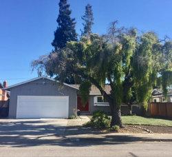 Photo of 751 San Pablo DR, MOUNTAIN VIEW, CA 94043 (MLS # 81673515)