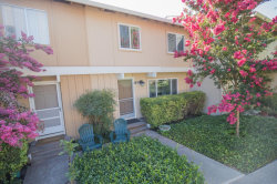 Photo of 37 Saw Mill LN, MOUNTAIN VIEW, CA 94043 (MLS # 81674433)