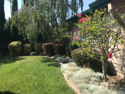 Photo of 38832 Judie WAY, FREMONT, CA 94536 (MLS # 81674493)