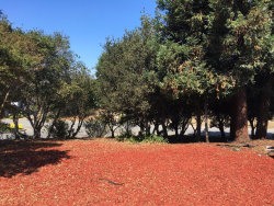 Photo of 15660 Red Oak PL, SALINAS, CA 93907 (MLS # ML81677569)