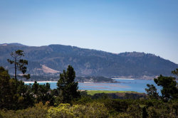 Photo of 1515 Riata RD, PEBBLE BEACH, CA 93953 (MLS # ML81728157)