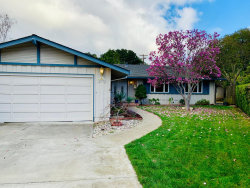 Photo of 11256 Palos Verdes CT, CUPERTINO, CA 95014 (MLS # ML81733054)