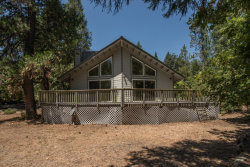 Photo of 101 Hazelwood LN, TRINITY CENTER, CA 96091 (MLS # ML81772101)