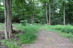 Photo of 6607 Brown Quarry ROAD, Sabillasville, MD 21780 (MLS # 1000103953)