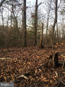 Photo of Secession Lane, New Market, VA 22844 (MLS # 1000130188)