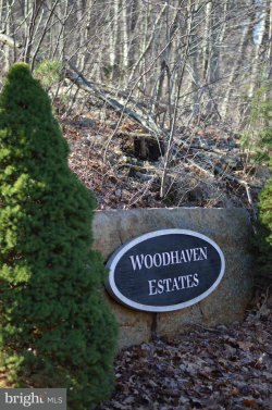 Photo of Lot 6 Wardensville PIKE, Star Tannery, VA 22654 (MLS # 1000200836)