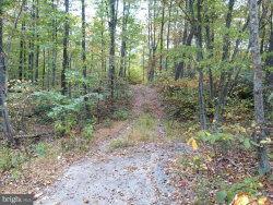 Photo of Three Mile Bank LANE, Edinburg, VA 22824 (MLS # 1000995301)