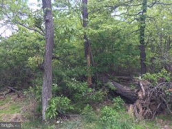 Photo of Ashwood COURSE S, Winchester, VA 22603 (MLS # 1001548654)