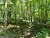 Photo of Abelia TRAIL, Star Tannery, VA 22654 (MLS # 1001961558)