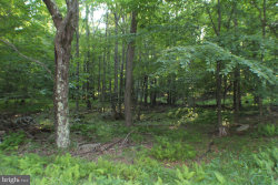 Photo of LOT 39 Dolly Sods Wilderness Retreat, Maysville, WV 26833 (MLS # 1002041576)