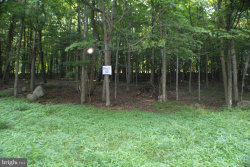Photo of Lot 42 Dolly Sods Retreat, Maysville, WV 26833 (MLS # 1002041592)