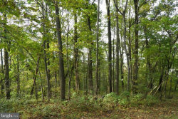 Photo of LOT 43 High Top ROAD, Linden, VA 22642 (MLS # 1002056082)