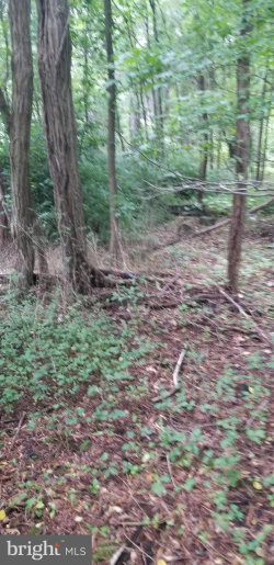 Photo of 0 Woodland DRIVE, Indian Head, MD 20640 (MLS # 1002231726)