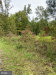 Photo of Harmony ROAD, Denton, MD 21629 (MLS # 1002772214)