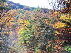 Photo of LOT 3 River ROAD, Paw Paw, WV 25434 (MLS # 1003976471)