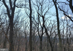 Photo of Trego Mountain ROAD, Keedysville, MD 21756 (MLS # 1004073061)