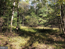 Photo of 0 Dellinger Acres ROAD, Edinburg, VA 22824 (MLS # 1008352962)