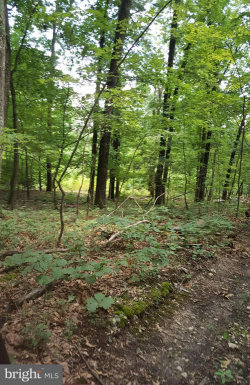 Photo of Lordens Lane, Edinburg, VA 22824 (MLS # 1009948108)