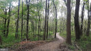 Photo of Lot 3 11649 S. Baugher, Thurmont, MD 21788 (MLS # MDFR234488)