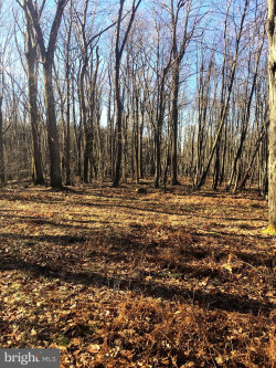 Photo of 950 Bryan Point ROAD, Accokeek, MD 20607 (MLS # MDPG541110)