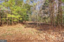 Photo of 0 Pristine PLACE, Parsonsburg, MD 21849 (MLS # MDWC107054)