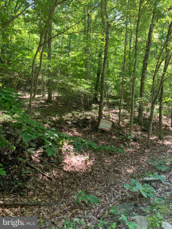 Photo of Hidden Springs Dr, Marshall, VA 20115 (MLS # VAFQ159562)