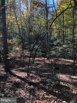 Photo of Route 667 State Road, King George, VA 22485 (MLS # VAKG118580)