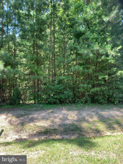 Photo of Lot 360 Winchester Trail, Mineral, VA 23117 (MLS # VALA119364)
