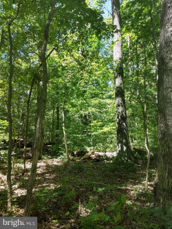 Photo of Lot 10 Cooke PLACE, Mineral, VA 23117 (MLS # VALA119412)