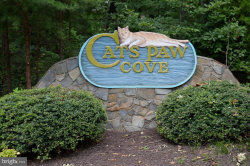 Photo of Cats Paw Cove Ct, Mineral, VA 23117 (MLS # VALA119960)