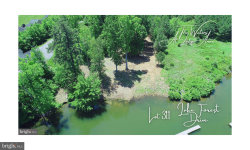 Photo of Lake Forest Dr, Mineral, VA 23117 (MLS # VALA121312)
