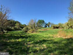 Photo of Lot B1D, Old Wheatland Rd, Waterford, VA 20197 (MLS # VALO424332)