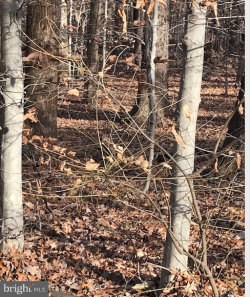 Tiny photo for Mcgrath ROAD, Manassas, VA 20112 (MLS # VAPW218810)