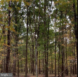 Photo of 10307 Benchmark ROAD, Fredericksburg, VA 22408 (MLS # VASP222138)