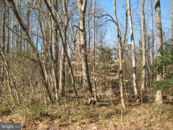 Photo of Wood Landing ROAD, Fredericksburg, VA 22405 (MLS # VAST201180)