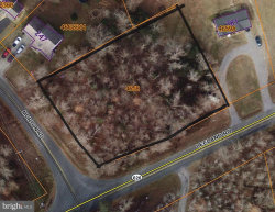 Photo of Leeland And Morton, Fredericksburg, VA 22405 (MLS # VAST221104)