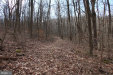 Photo of Mosby Springs ROAD, Linden, VA 22642 (MLS # VAWR140166)