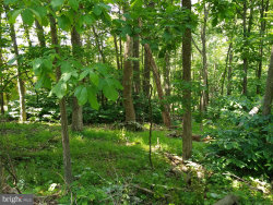 Photo of Lot 44 Shenandoah Valley Dr, Front Royal, VA 22630 (MLS # VAWR140692)