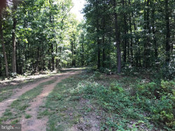 Photo of 6138 Cherry Run ROAD, Hedgesville, WV 25427 (MLS # WVMO114436)