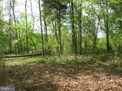 Photo of Spring Valley, Berkeley Springs, WV 25411 (MLS # WVMO117228)